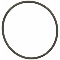 "Gasket  for 3/4"" port 10""x2.5"" housing (o-ring)"